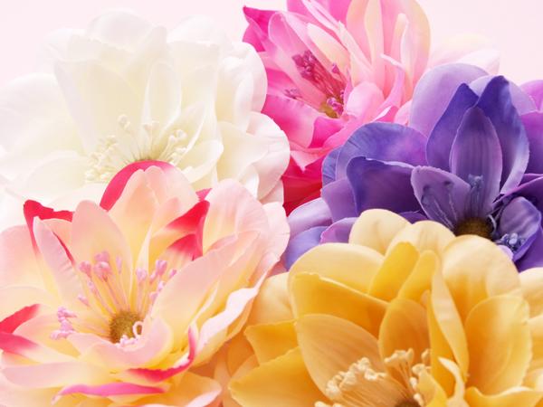 http://beauty.yumeyakata.com/beauty_voice/DSCF7900.jpg