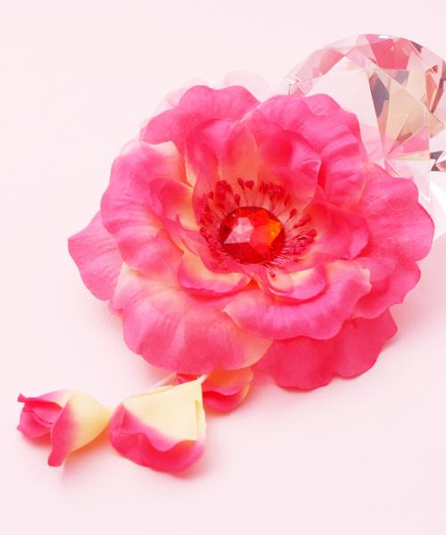 http://beauty.yumeyakata.com/beauty_voice/DSCF7924.jpg